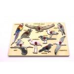 Вкладыш Птицы, Игрушка деревянная развивающая. арт. DG-В005-ANT